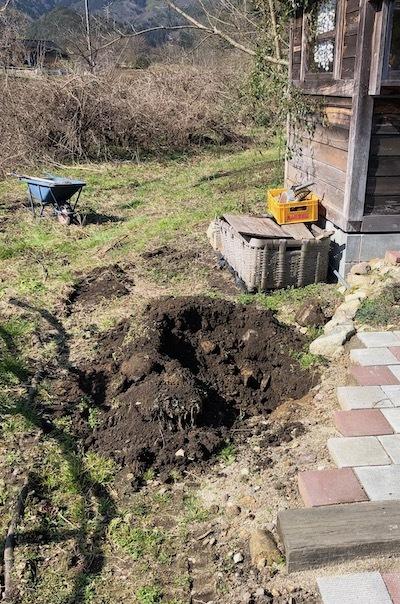 ミニりんご植え穴1