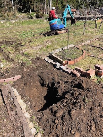ミニりんご植え穴2