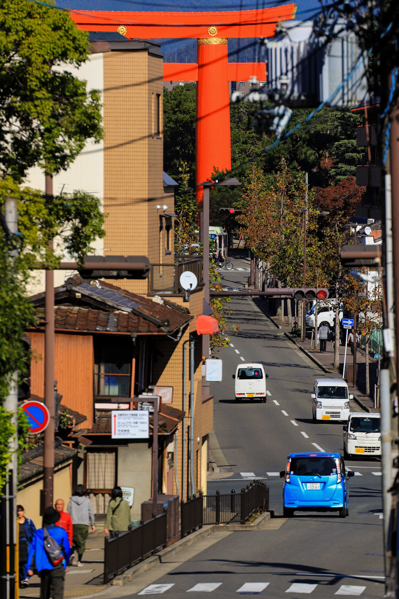 kyoto_cycling-12.jpg