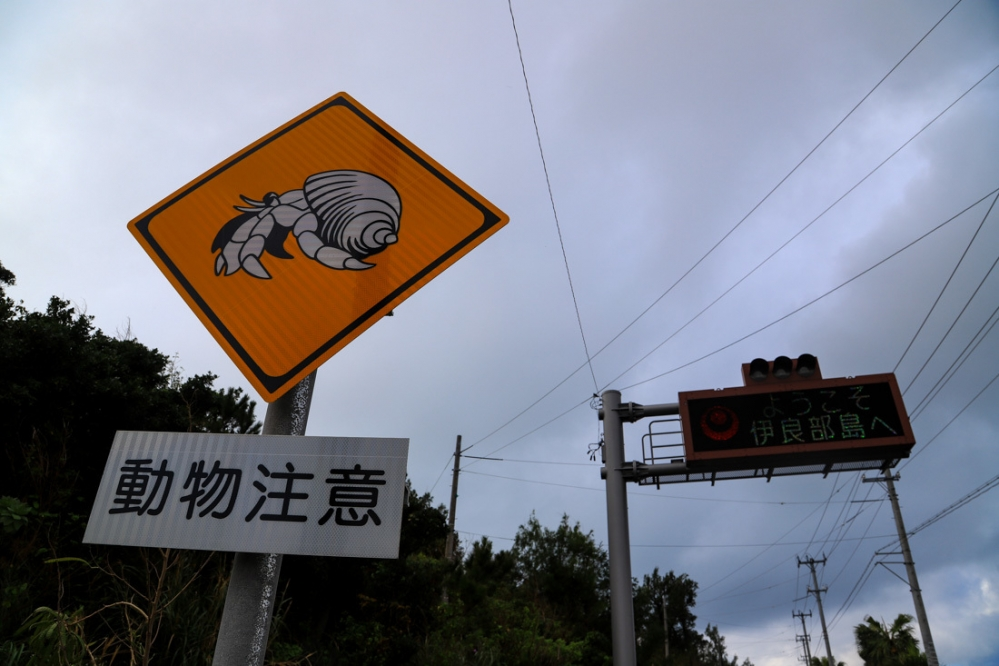okinawac02-4.jpg