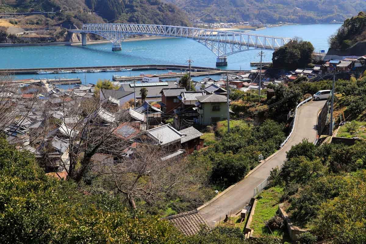 shimatake-31.jpg