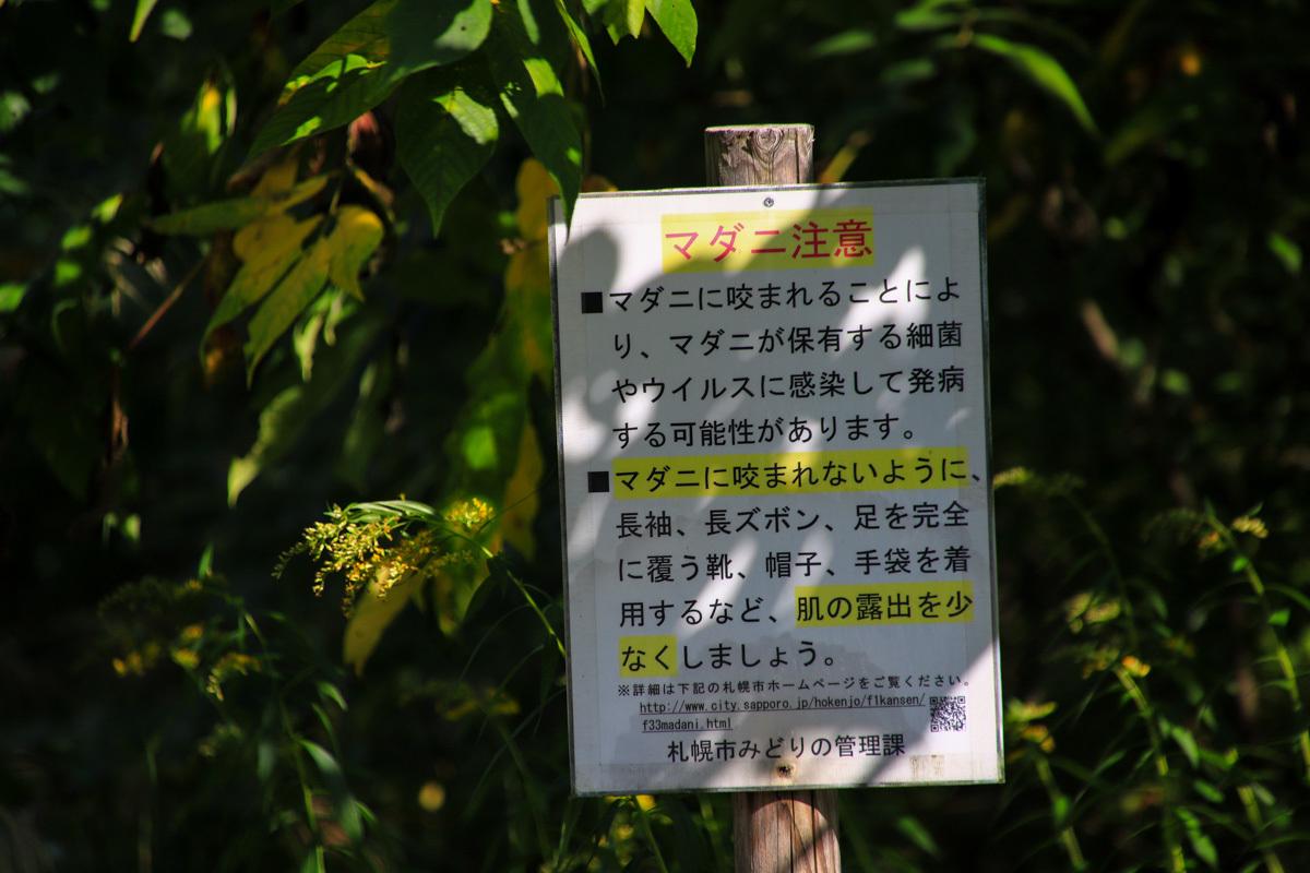 sorachi022-7.jpg