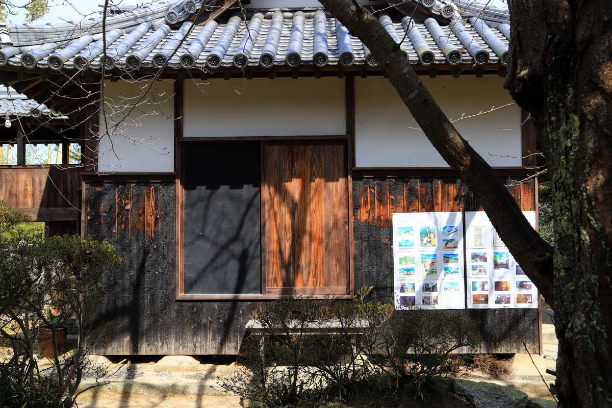syodoshimax-17.jpg