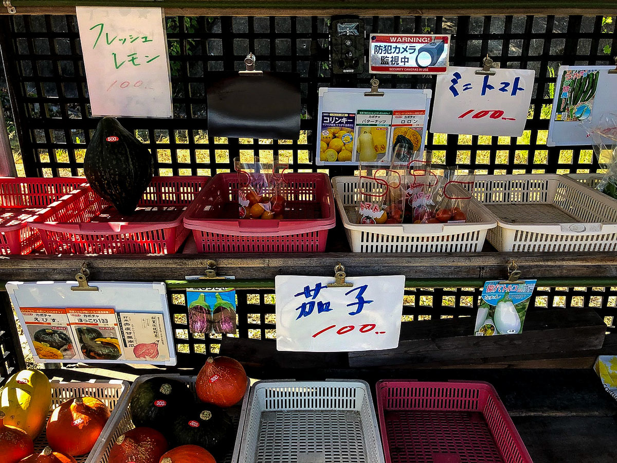 tobishima3-36.jpg