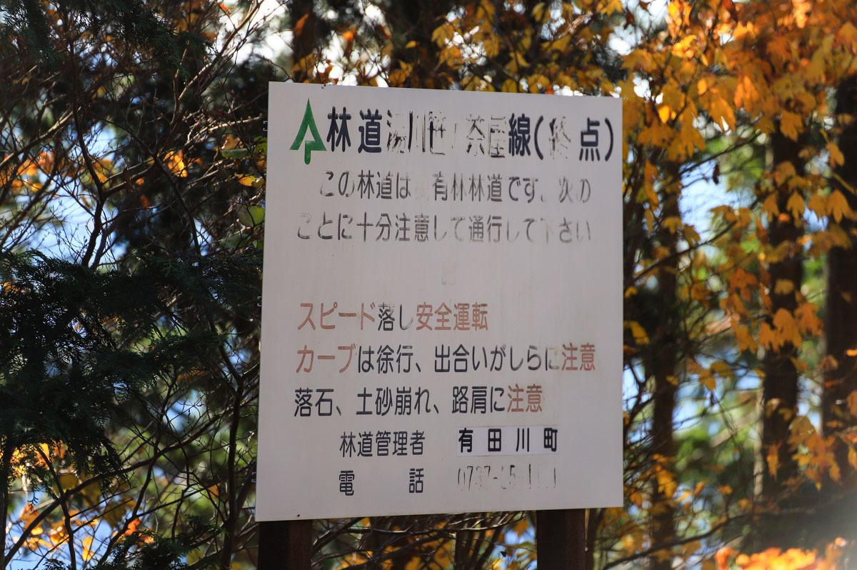 wakayama-25.jpg