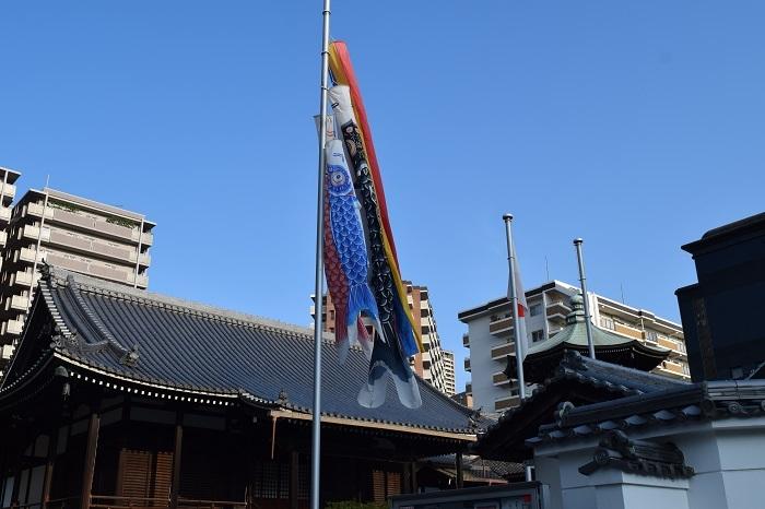 DSC_0143202005鶴見