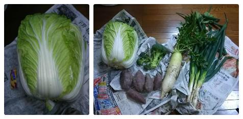 令和元年12月24日野菜