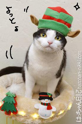 メリークリスマス☆イブの