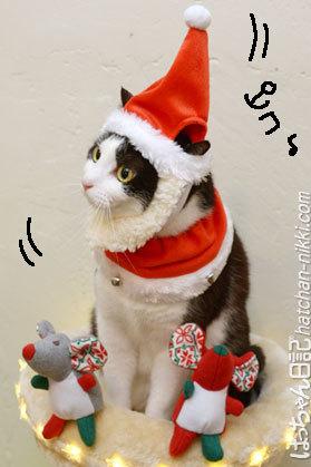 MERRY CHRISTMAS.:。+゚☆