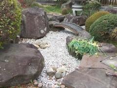 庭の池整理後
