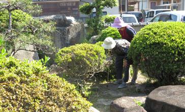 庭散歩98