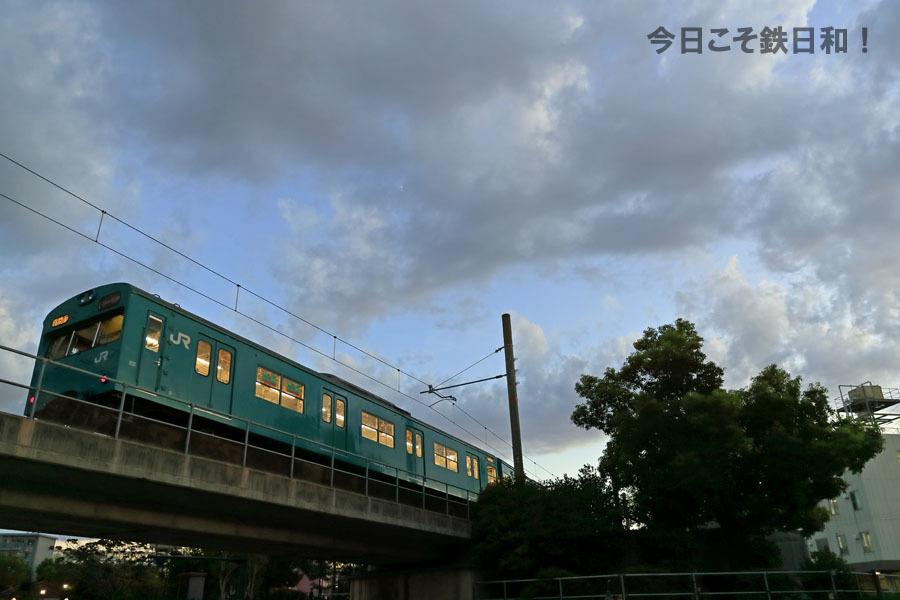 _MG13509.jpg