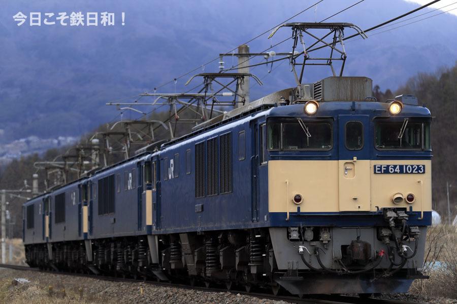 _MG16104.jpg