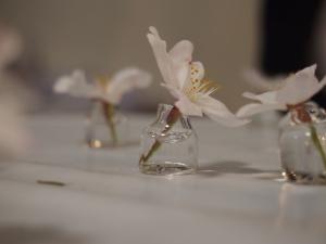 お花いけ2