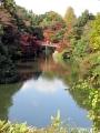 2019年秋の高岡古城公園4