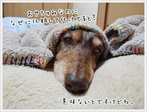 fc2_2020-02-11_02.jpg
