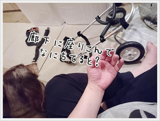 fc2_2020-03-11_02.jpg