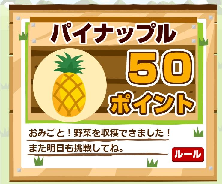パイナップル50