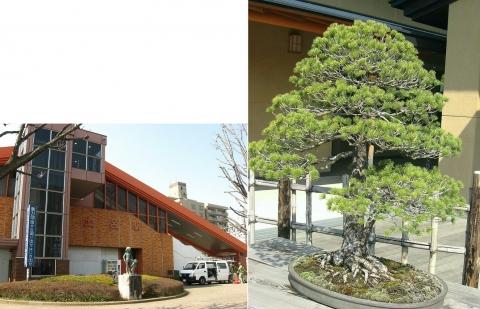 土呂駅と盆栽美術館(連結)