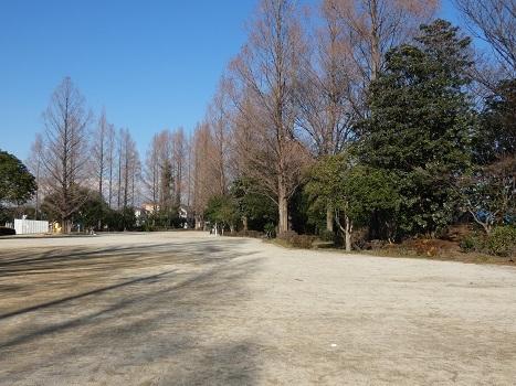 きれぎれの風彩「伊奈公園 0113」200201-09