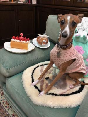 くりちゃん2歳誕生日