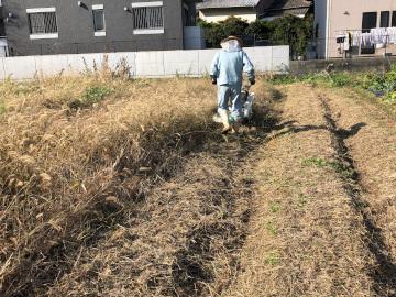 畝作り4畝マルチ張り3