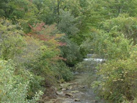 タデ原湿原 風景 6