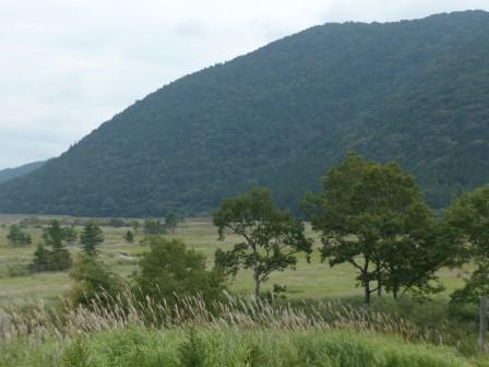 タデ原湿原 風景 7