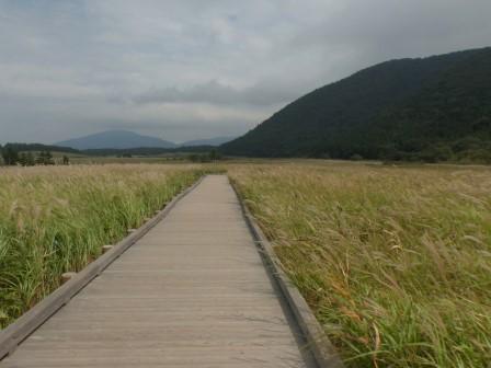 タデ原湿原 風景 5