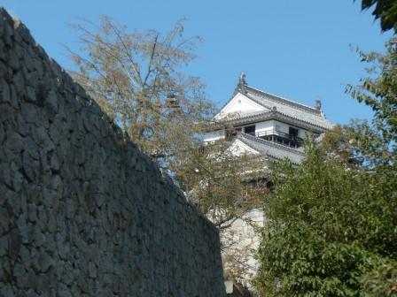 裏側から見た松山城・大天守