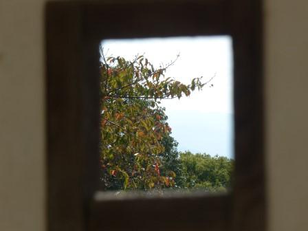 狭間から見た紅葉