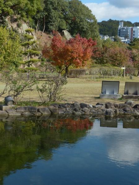 池に映る景色 2