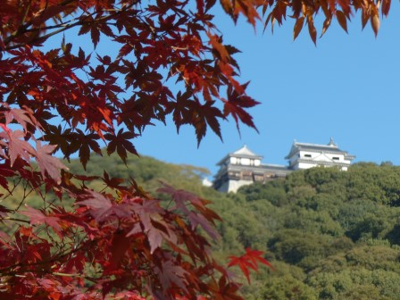 松山城二之丸史跡庭園 松山城天守閣と紅葉