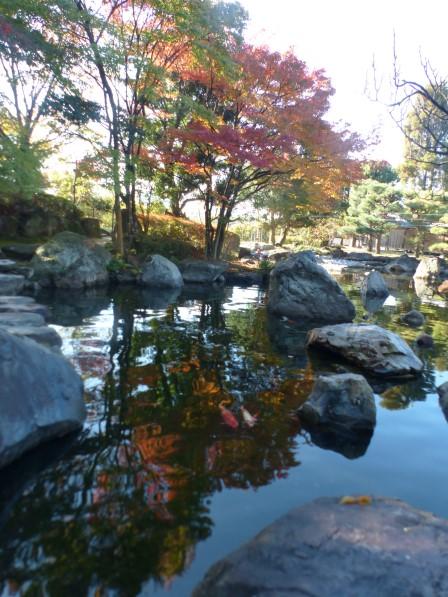 松山城二之丸史跡庭園 池と紅葉 1
