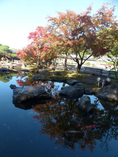 松山城二之丸史跡庭園 池と紅葉 2