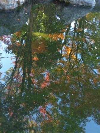 松山城二之丸史跡庭園 池に映る紅葉
