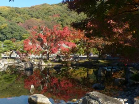 松山城二之丸史跡庭園 池と紅葉 3