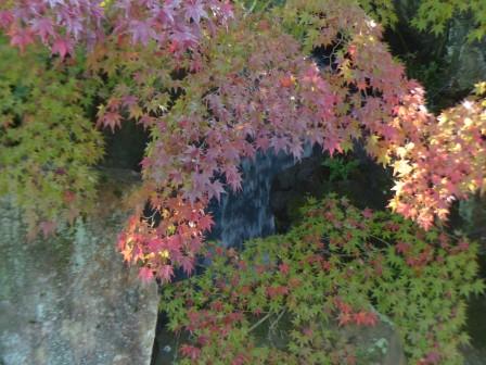 松山城二之丸史跡庭園 滝と紅葉 2