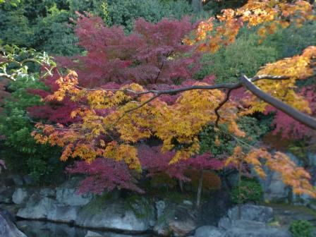 松山城二之丸史跡庭園 池と紅葉 6