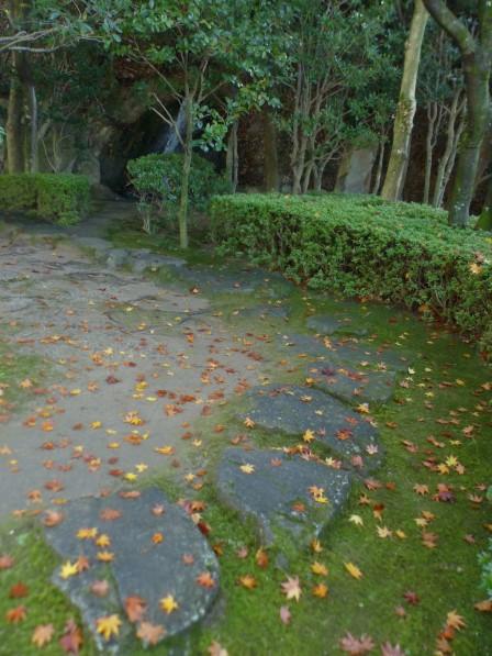松山城二之丸史跡庭 紅葉の落ち葉