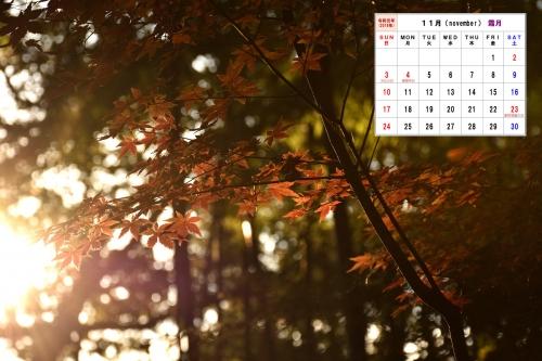 11月カレンダーD7T_8502-1S