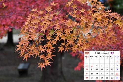 11月カレンダーD7T_5500-1S