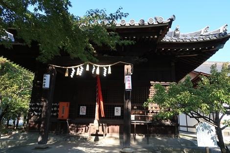 長浜 (126)