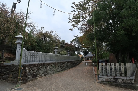 和泉葛城山 (177)