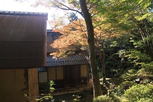 2019-11 近江八幡 (14)