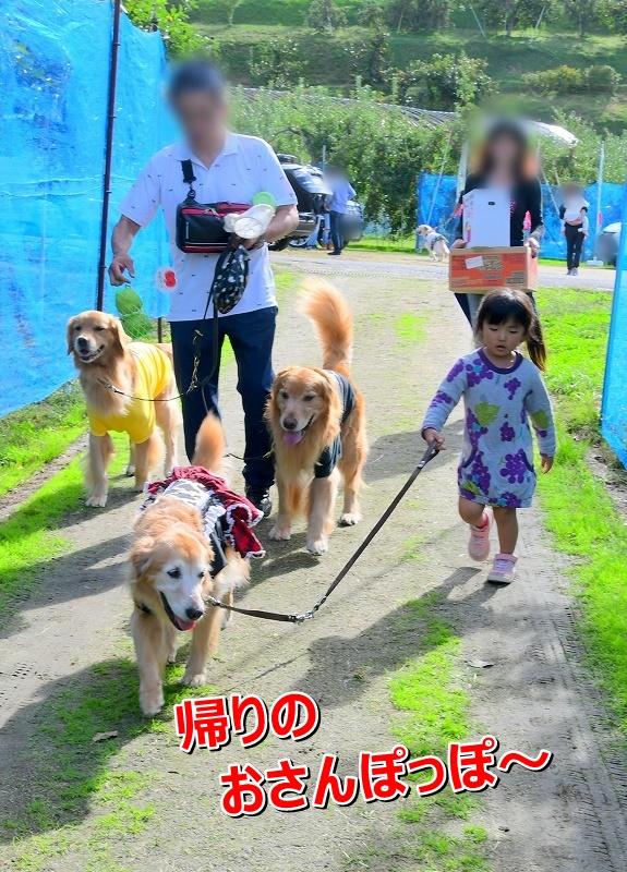 DSC_0739アオちゃんお散歩