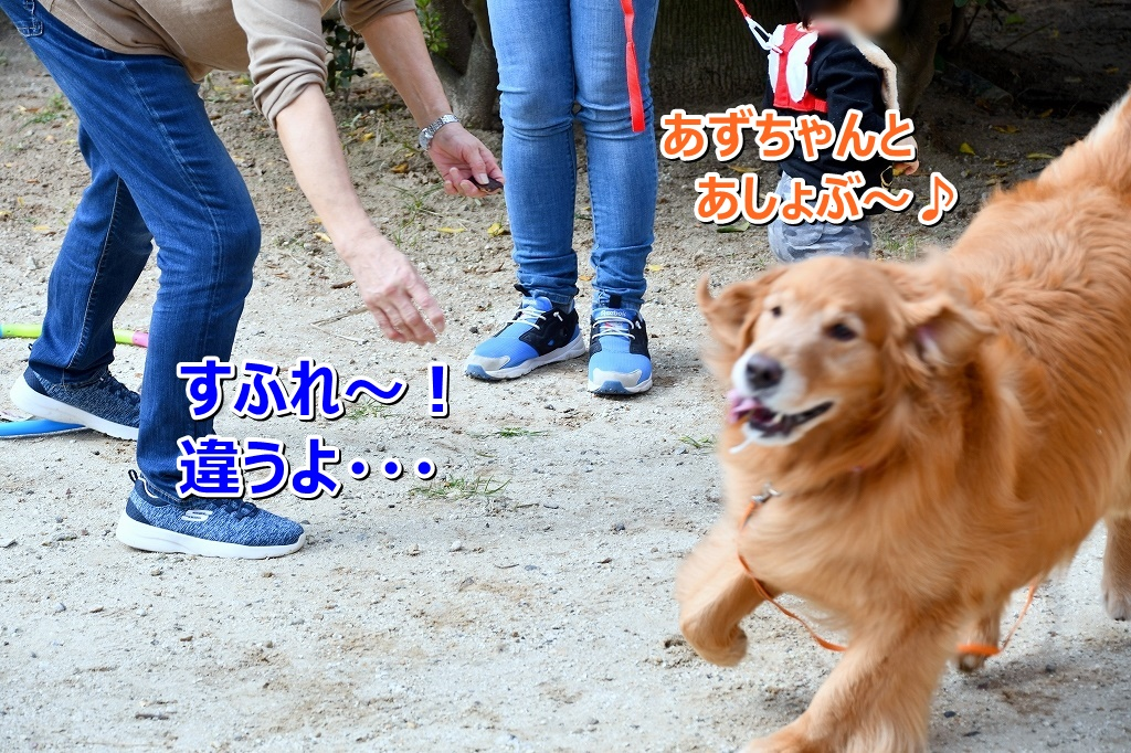 DSC_0828わはは~ すふれ~!