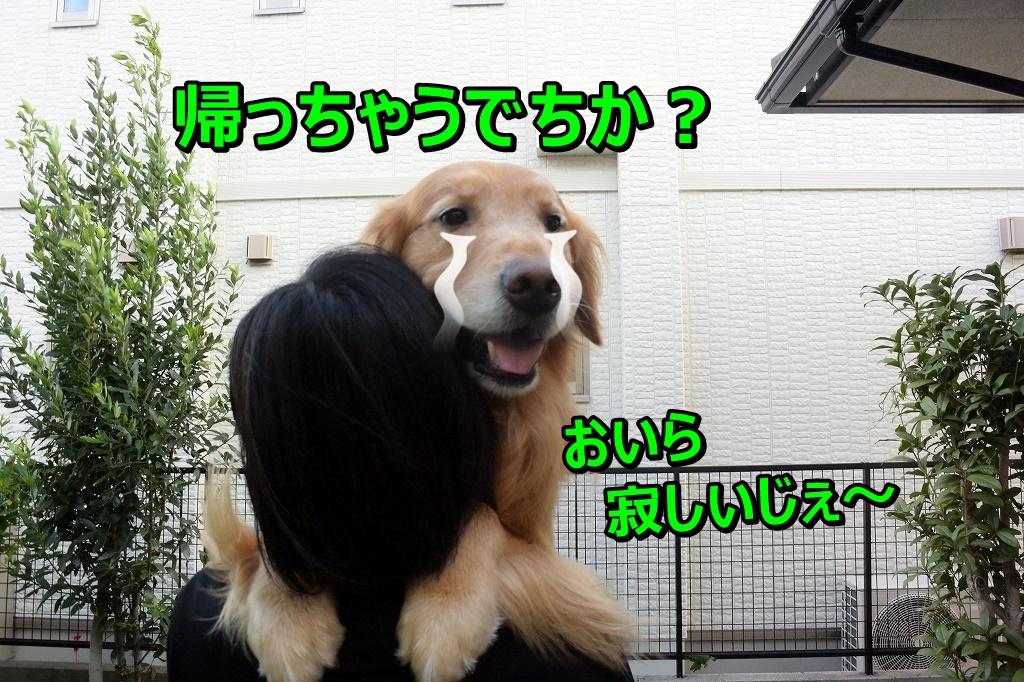DSC_7300帰っちゃうの~?