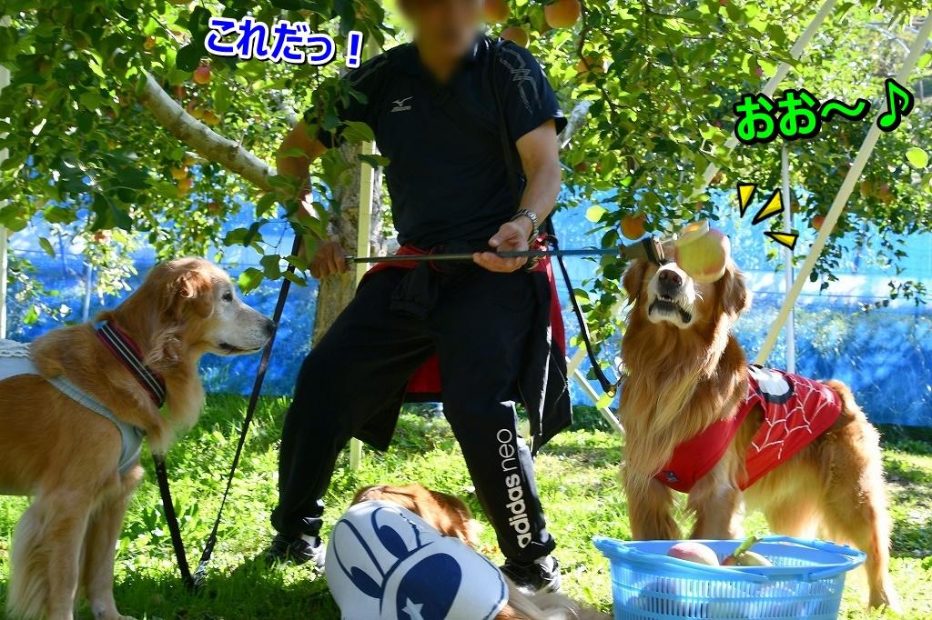 DSC_1518おお~