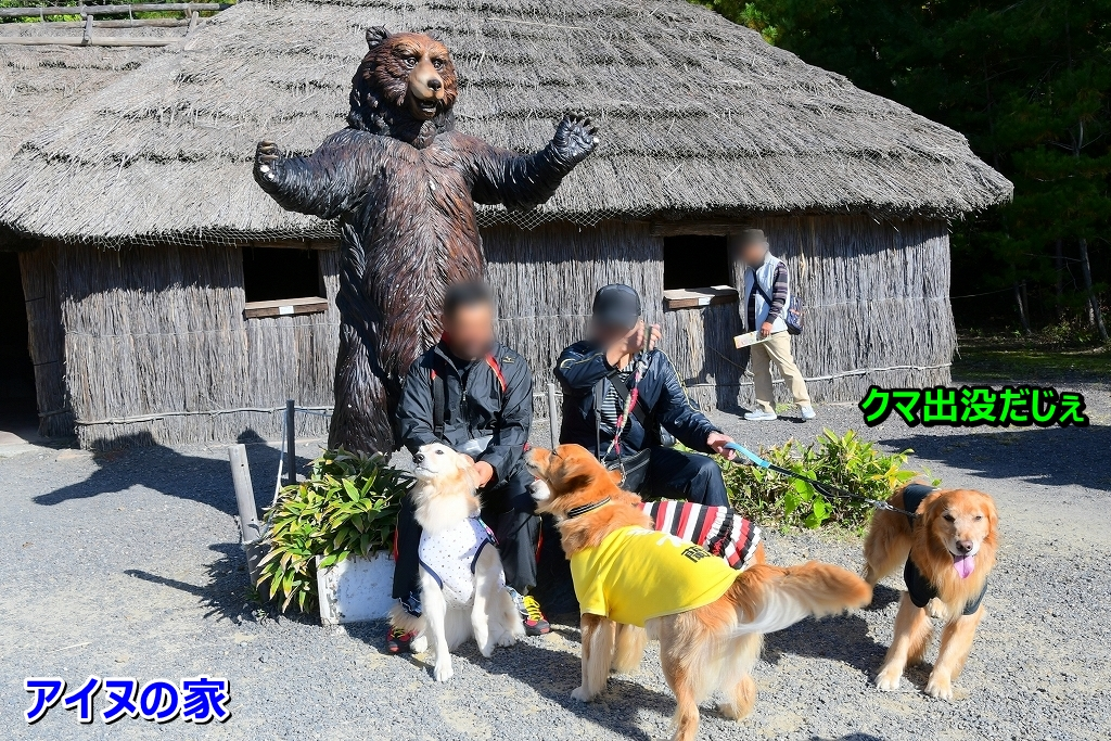 DSC_1693アイヌの家 今度は熊さんら~